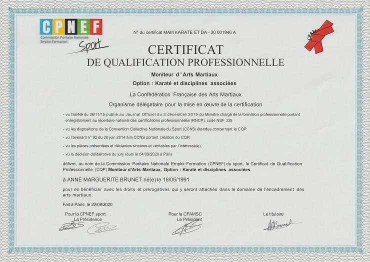 CQP Moniteur d'arts martiaux